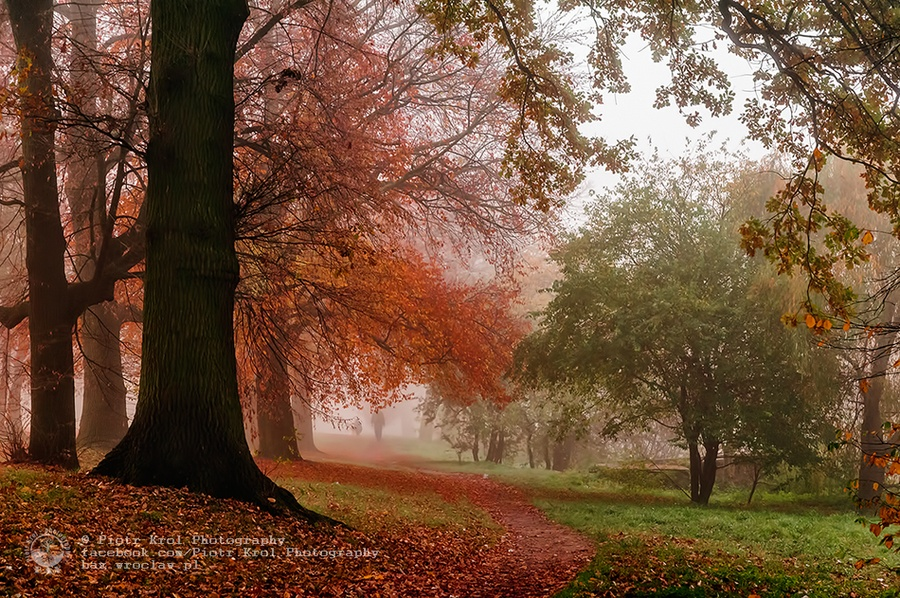 autumn2013_02