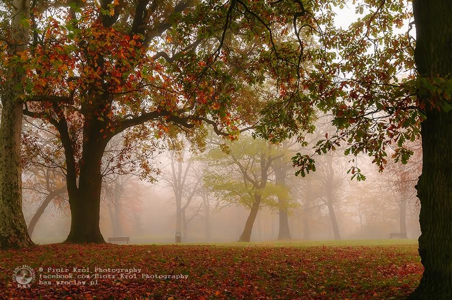 autumn2013_04