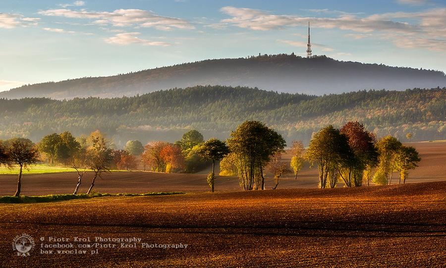 autumn2013_08