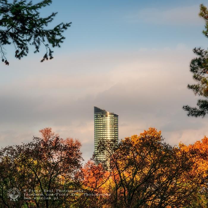 autumn2013_13